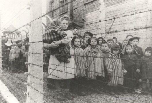 Spośród ponad 230 tys. dzieci deportowanych przez Niemców do Auschwitz wyzwolenia doczekało 700 z nich.