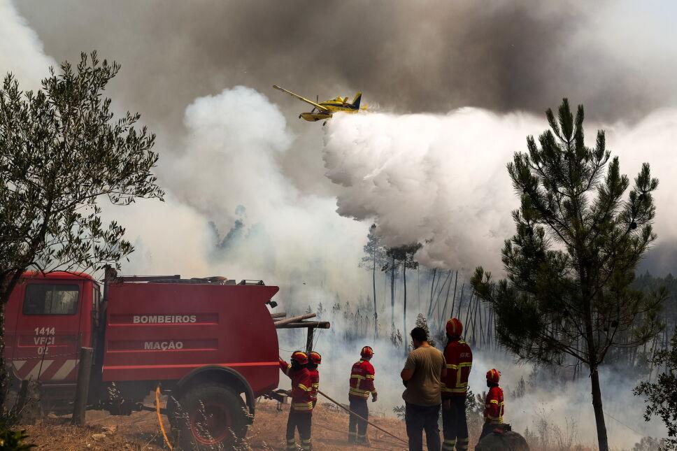 Pożar w Macao, Portugalia