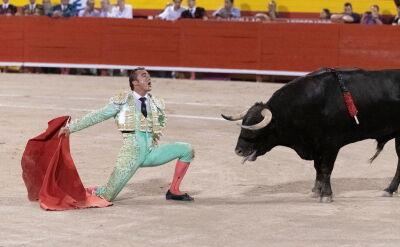 Korrida od lat wzbudza w Hiszpanii kontrowersje