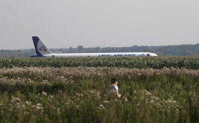 Samolot awaryjnie lądował w polu kukurydzy