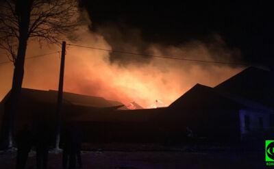 Spłonęły budynki i zwierzęta. Jednej nocy, na sześciu posesjach