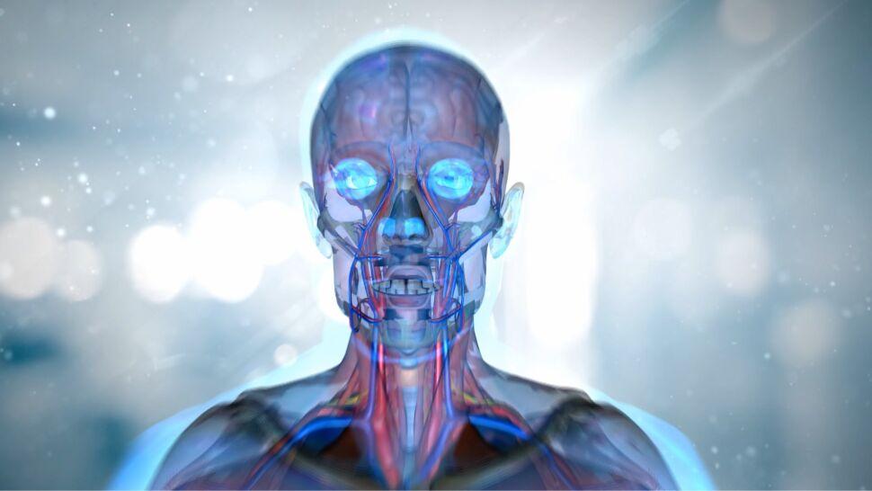 Niezwykłe odkrycie neurobiologów dotyczące ludzkiego mózgu