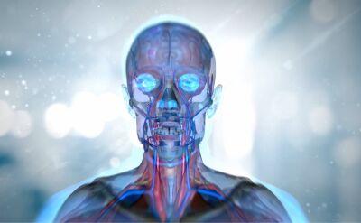 Niezwykłe odkrycie australijskich neurobiologów