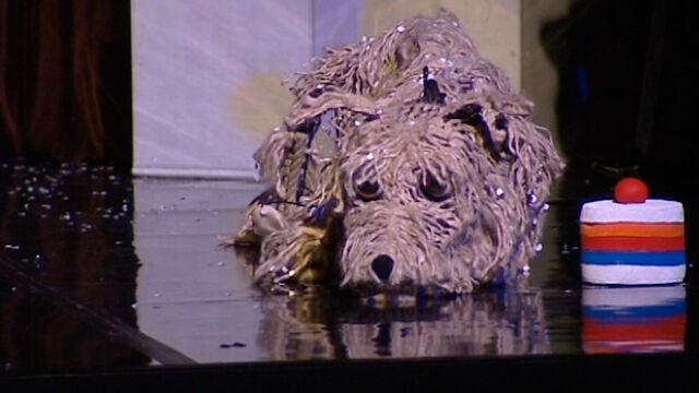 """""""Baltic. Pies na krze"""" w gdańskim Teatrze Miniatura. """"To nasza opowieść wigilijna"""""""