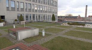 02.04   Zielone dachy w Łodzi