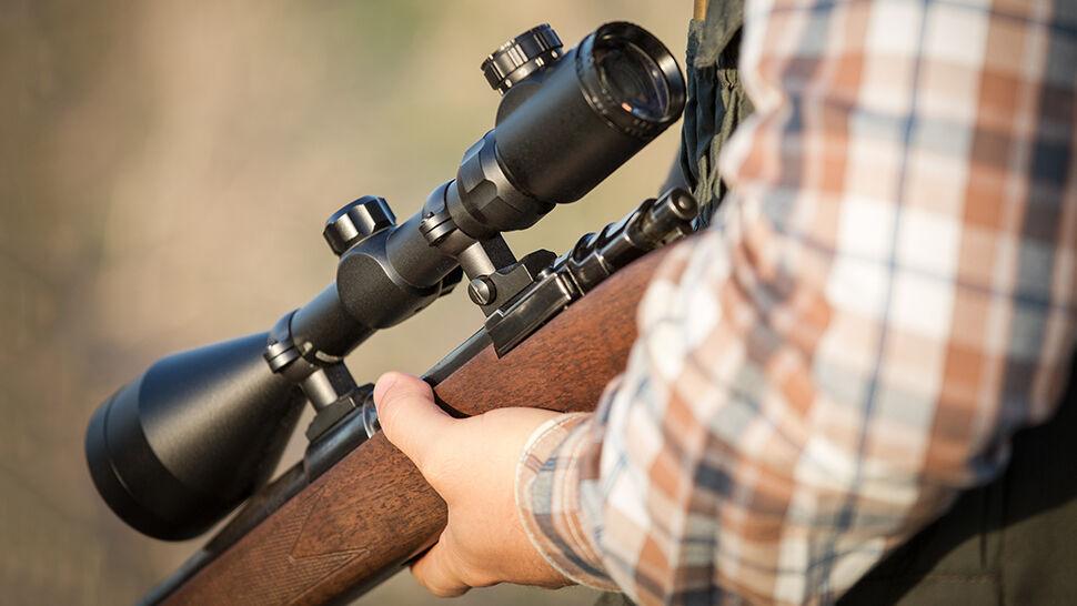 Myśliwy oskarżony o zastrzelenie lisa w okresie ochronnym. Przyłapał go fotograf