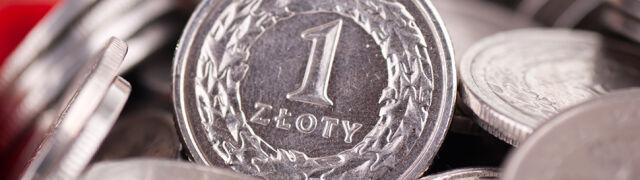Piątkowe kłopoty złotego. Polska waluta mocno straciła na wartości