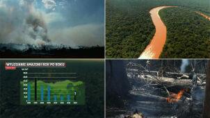 Amazonia. Region ważny dla całego świata