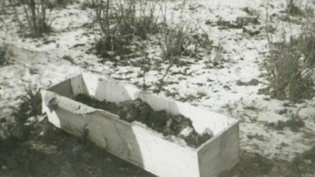"""Polowanie na Żydów """"bez Polaków nie miałoby szans"""""""