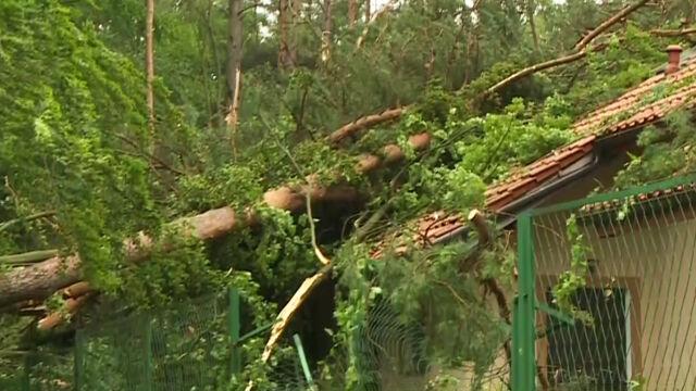 Wichury i setki powalonych drzew w całym kraju