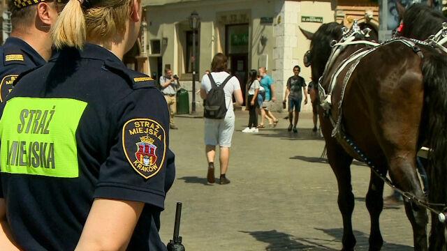 """""""Ogłaszam zamknięcie postoju dla dorożek na Rynku"""". Konie przepisowo stoją w słońcu obok"""