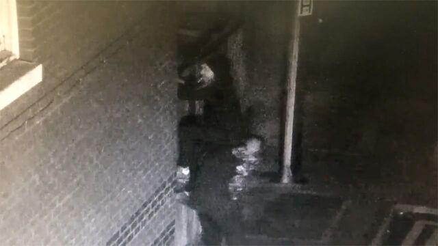 Chcieli obrabować sklep, nie mogli przeskoczyć bramy. Nagrał ich monitoring