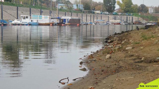 Kolejne ciało wyłowione z portu Czerniakowskiego