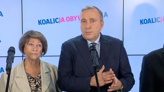 Schetyna: chcemy międzynarodowej kontroli nad procesem przeliczania głosów