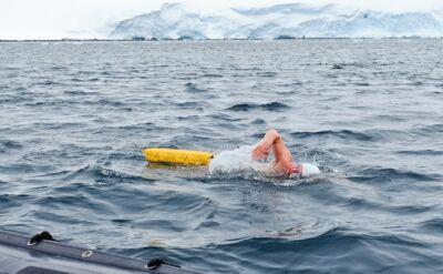 Wyczyn Polaka. Przepłynął kilometr w zimnej wodzie na Antarktydzie
