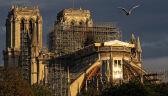 Katedra Notre Dame spłonęła w połowie kwietnia tego roku