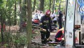 Konar przygniótł 13-latka w Lasku Złotoryjskim