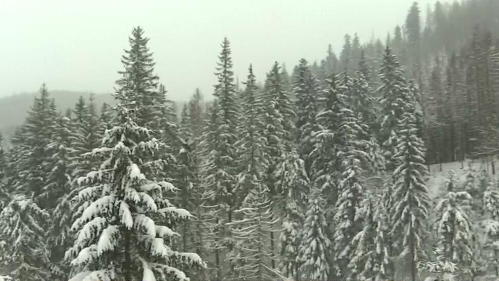 Poszukiwany w Tatrach mężczyzna znalazł się na Słowacji. Szukało go 16 ratowników TOPR