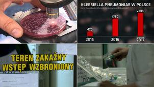 Superbakteria z Indii zadomowiła się w Polsce. Może doprowadzić nawet do śmierci