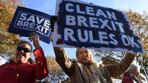 Lider eurosceptyków nie poprze propozycji w sprawie brexitu