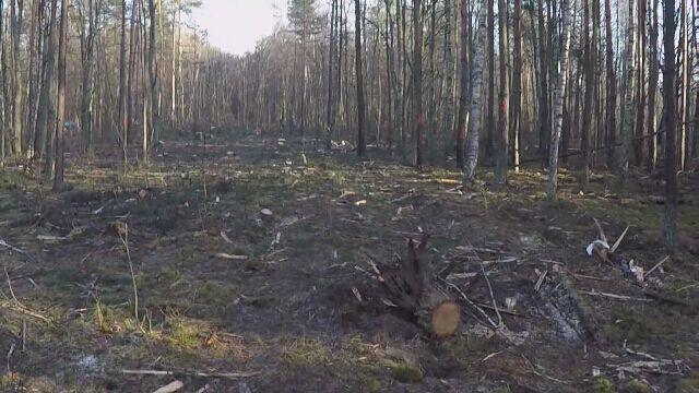 Katastrofa myśliwca MiG-29 pod Mińskiem Mazowieckim