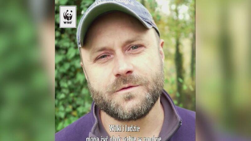 Leszek Lichota w kampanii WWF Chrońmy Wilka