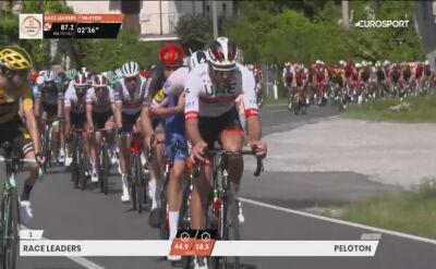 Trentin z CCC Team zaliczył upadek i wycofał się z Milan-San Remo