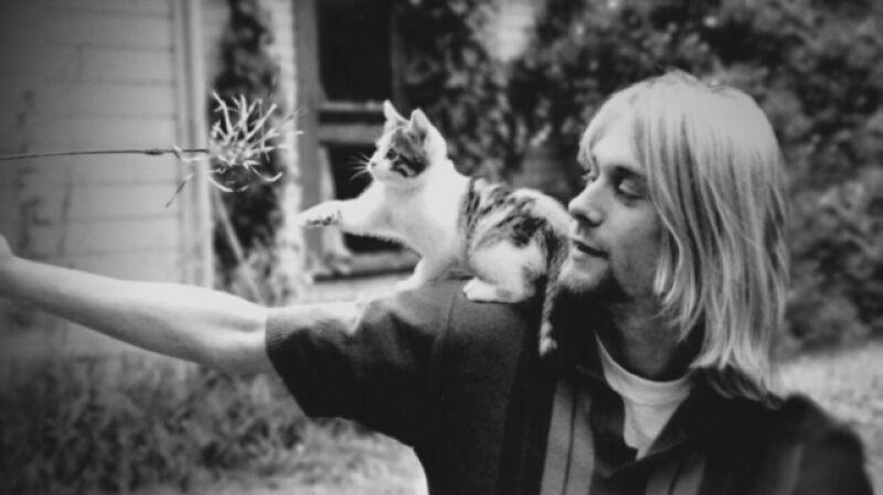 """Cobain: Montage of Heck"" - trailer filmu"