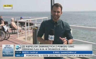 Sinice w Bałtyku (wideo z 30.07.2018)