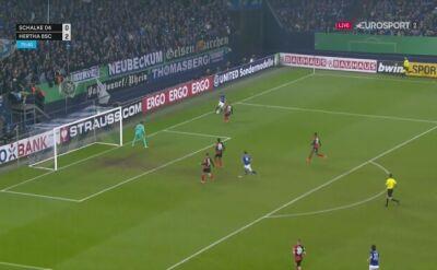 Daniel Caligiuri z golem dla Schalke