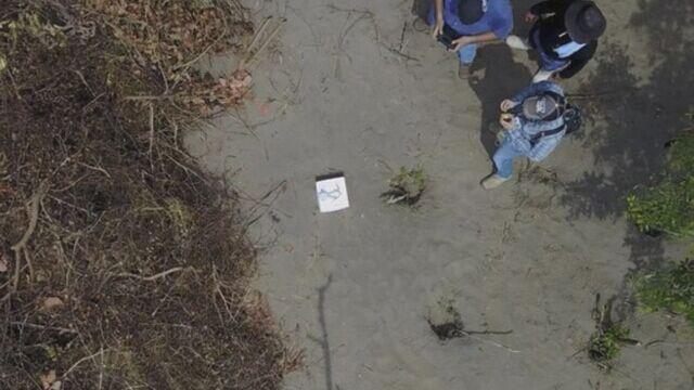 Meksyk: śledczy znaleźli 166 ludzkich czaszek w grobie