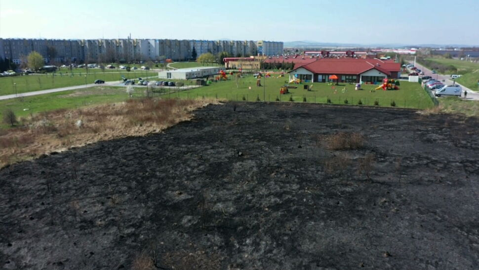 Wypalał trawę za ogrodzeniem szkoły i żłobka. Prezydent daje 1000 złotych za wskazanie sprawcy
