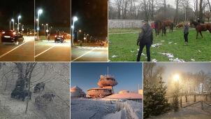 Śnieżna Śnieżka, spacer dzików czy ucieczka koni? Wybieracie materiał tygodnia
