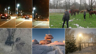 Śnieżna Śnieżka, spacer dzików czy ucieczka koni?