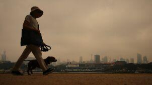 Dym dusi Sydney.
