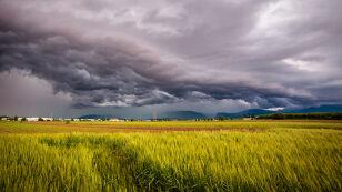 IMGW wydał alarmy przed burzami. Prognoza zagrożeń