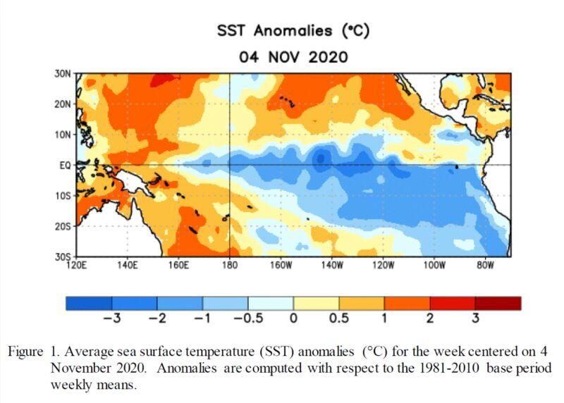 Odchylenie temperatury wód powierzchniowych Pacyfiku w pierwszym tygodniu listopada od normy z wielolecia 1981-2010 (CPC)