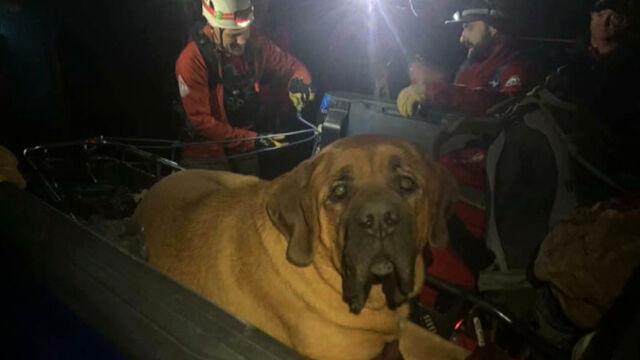 Niecodzienna akcja ratowników na Grandeur Peak