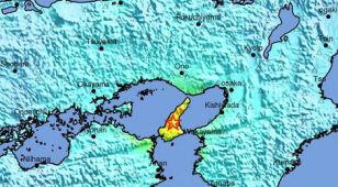 Trzęsienie ziemi w Japonii. Są ranni, elektrownia atomowa bez uszkodzeń