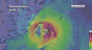 Prognozowane porywy wiatru podczas tajfunu Mitag (Ventusky.com)